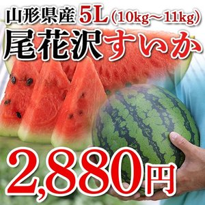 【秀品】山形県産 尾花沢すいか 1玉 5Lサイズ (約10〜11kg)